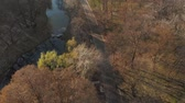 Aerial view over Nicolaer Romanescu Park, Craiova Stock Footage