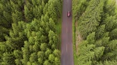лес : Aerial view of red cars driving on a mountain road