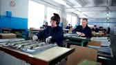 ligado : Kherson, Ukraine - 15 April 2016: Disabled group is working on the production in Kherson 15 April 2016. Visually impaired working at the plant for the production of fluorescent lamps Vídeos
