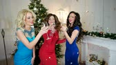 saúde : Girl says toast, Christmas Cheers, a group of girls drink alcohol from of wine glasses, young women having fun New Years party, girls smiling, near the Christma tree, Stock Footage