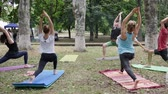 chakra : Kherson, Ukraine - 27 May 2017: City Festival womens and mens doing exercises, warm-up in open air, fitness female and guys on colorful mat, making stretch, group people performing yoga Stock Footage