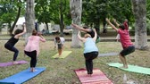 chakra : Kherson, Ukraine - 27 May 2017: City Festival warm-up in open air, womens and mens doing exercises, fitness female and guys on colorful mat, making stretch, group people performing yoga