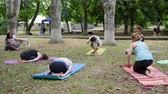 chakra : Kherson, Ukraine - 27 May 2017: City Festival, yoga class outdoors, healthy lifestyle, wholesome women and men doing exercises Stock Footage