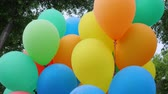 társult : colored helium balloons, festive colorful air balloons associated bundle, swaying in light wind blow, holiday accessories on nature, fastened balloons into bundle, slow motion