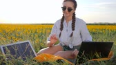 coletor : new technology, girl recharges laptop using solar battery on field of sunflowers, young woman applying solar photovoltaic panels outdoors, female with notebook charging from sun