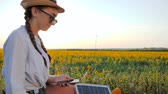 eficiente : female with cellphone and battery, girl using mobile and solar panel communicates in social network on background field, young woman browsing cellular phone uses solar battery