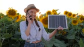 коллектор : environmentally friendly resources, girl speaks by mobile phone and holds solar panel near field of sunflowers, woman in backlit talk mobile and keep solar battery tracking sun to charge battery