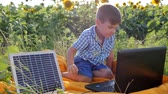 коллектор : energy-generating technology, happy child using laptop powered by solar battery on background field of sunflowers, kid looks at notebook with solar charger outdoors, modern childhood