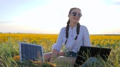 coletor : energy consuming technology, girl talking on laptop using solar battery on field of sunflowers, young woman applying solar cell outdoors, female in backlight with notebook charging from sun Vídeos