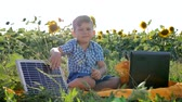 flower production : child shows hand gesture like and smile near solar cell on background field of sunflowers, boy uses solar energy to recharge laptop outdoors, power production in slow motion