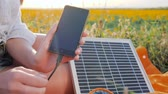 coletor : cell phone close-up, battery charger solar powered outdoor, renewable energy, close up screen cellular telephone, hands girl connects from solar panel to mobile phone outside Vídeos