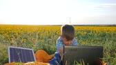 батарея : eco, youngster shows sign approval near solar panel, boy looks in computer using battery charger outdoors, contemporary child apply new technology on background sunflower, power production