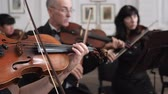 com cordas : people play wooden violins in a white hall Symphony Orchestra concert or rehearsal in slow motion Stock Footage