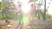adorável : walk with pet in warm autumn day, kids have a good time together at park in the backlight