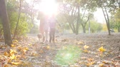 yellow dog : kids run with her small dog on yellow leaves in slow motion at autumn park in the backlight