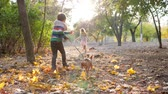детский : autumn games, little girl and boy jogging with her dog on warm day at park in the backlight