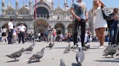 marco : Venice, Italy 19 May 2018: photo memory from travel, tourists with mobile phones walk at San Marco square among birds on background Cathedral in Venice, 19 May 2018.