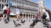 marco : Venice, Italy 19 May 2018: tourists different nationalities are photographed on smartphones with pigeons during journey on St. Marks Square in Venice, 19 May 2018.