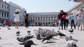 marco : Venice, Italy 19 May 2018: walk in Europe, many pigeons go and flies among passers people on St. Marks Square in Venice, 19 May 2018.