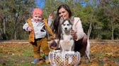 yellow dog : little boy walk beside mom and husky dog in basket on yellow leaves, happy family vacation in autumn park Stock Footage