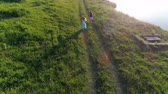 dinlenmek : drone view, active child with girlfriends with colored ribbons in arms spend leisure at green lawn along loch Stok Video