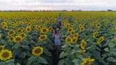 rodzeństwo : cheerful children on nature enjoy the fresh air and walk around the field with sunflowers in slow motion