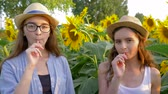 helianthus : cheerful teen girls eating sweet lollipops and smiling on the background of yellow field with sunflowers