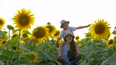 helianthus : childhood, kid raises hands imitating a flight on sunflower field sitting on the neck of the sister in sun light Stock Footage