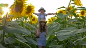 helianthus : happy girl carrying smiling kid on neck runs across the field with sunflowers in the backlight Stock Footage