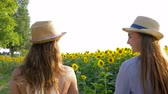 helianthus : happy girlfriends in straw hats walk by the hands on field with yellow sunflower outdoors