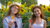 lolipop : happy teenagers with sweet lollipops in hands smiling on the background of yellow field with sunflowers
