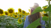 helianthus : rural summer holidays, teenager in glasses and a straw hat walk on field of flowering sunflowers in sunny light