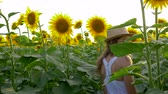 helianthus : teen girl enjoy the countryside beauty on field with sunflowers in the backlight