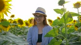 helianthus : teenager girl on field with sunflowers enjoy the countryside beauty in the backlight Stock Footage