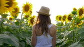helianthus : village summer holidays, girl enjoy the countryside beauty on field with sunflowers in the backlight