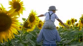 helianthus : village vacation, girl with little boy on neck walk on field with sunflowers in the backlight