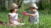 satisfeito : childrens couple outdoors, boy gives pink flower to happy girl sitting in green grass at sunny day