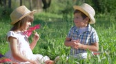 satisfeito : little couple in love outdoor, boy gives pink flower to pretty girl sitting in green grass Stock Footage