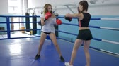 bokszolás : sports young women train in short shorts in gym, girl takes blows on boxing paws of a strong female in gloved on ring