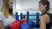 pugilist : strong young female rivals in blue and red gloves meet for boxing match on ring in sports club