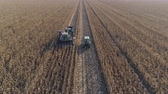 hozam : farming, agricultural machinery on cornfield during harvest season in autumn in drone view