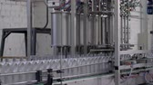 produtos químicos : production of motor oil, row of gray plastic bottles on a moving conveyor line on factory Stock Footage