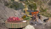 filé : outdoor cuisine, piece of succulent meat in spices on wooden stump for cooking steak on background of bonfire at picnic in nature