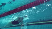 nadadores : Sports female swimmer floating in blue water pool during practicing before race, underwater view