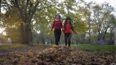 若々しい : girlfriends for walks, cheerful friends run towards each other, clutching their hands and scattering a bunch of fallen leaves in the autumn peak of the fall season