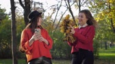 若々しい : joyful girlfriends, lovely young women girlfriends take selfies in autumn pack on the background of fallen leaves while relaxing outdoors 動画素材