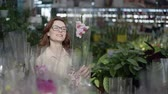 jardinier : young attractive female flower grower with glasses for vision chooses decorative flowering houseplant, in pots in greenhouse of shop for interior decoration of house or garden