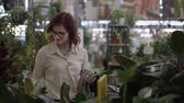 jardinier : cute young woman in a store chooses pot with a decorative blooming flower for home decor in department of indoor plants in supermarket Vidéos Libres De Droits