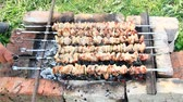 shish kebab : Appetizing shashlik outside. Cooking of pork meat. Barbecue lunch outdoors. Process of cooking pork meat on fire. Shashlik prepared on barbecue grill over charcoal