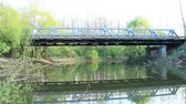 bridge across the river : Car bridge across the river. River flowing under bridge. Landscape with bridge. Pond in forest Stock Footage